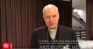 Cardenal de Mexico