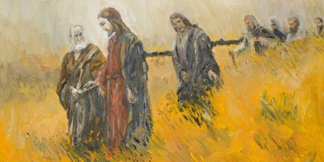 Marcos 4, 26-34 - 6