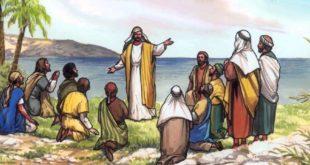 Mateo 10, 26-33 - 3